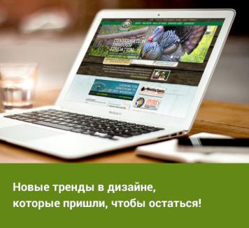 Новые тренды в веб-дизайне, которые пришли, чтобы остаться!