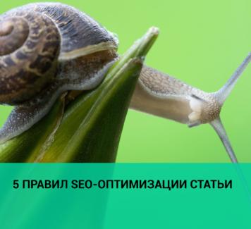 5 правил SEO-оптимизации статьи