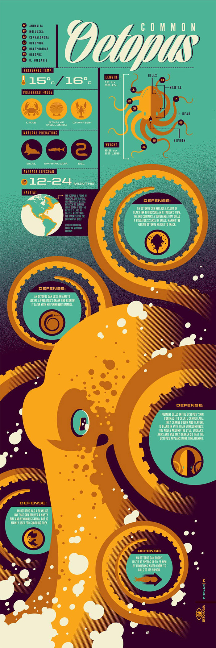 Awesome infographic poster