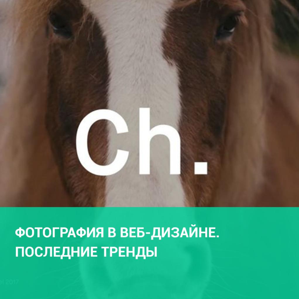 Фотография в веб-дизайне. Последние тренды