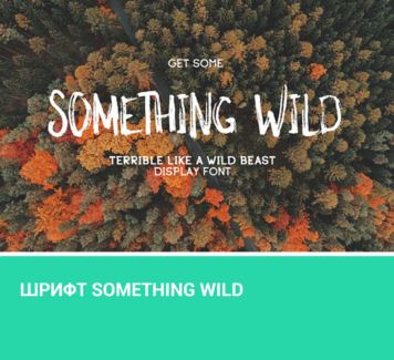 Шрифт Something Wild