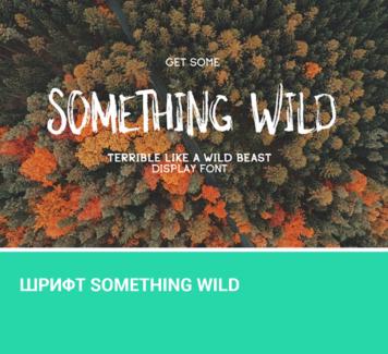 Шрифт Something Wild