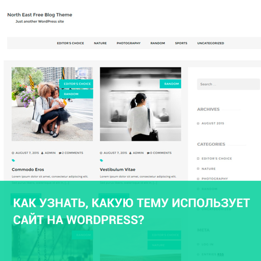 Как узнать, какую тему использует сайт на WordPress?
