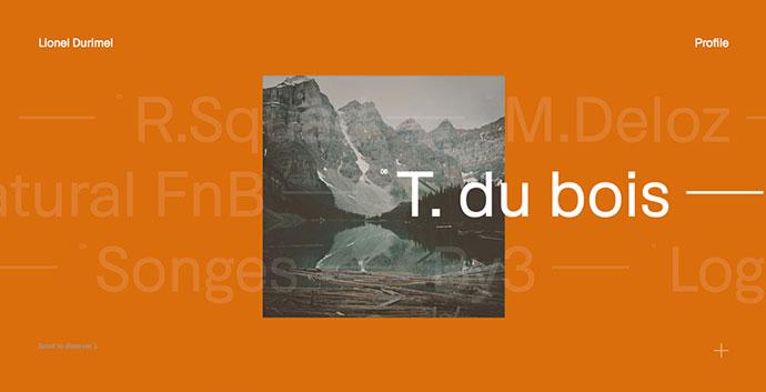 23 красивых типографических портфолио
