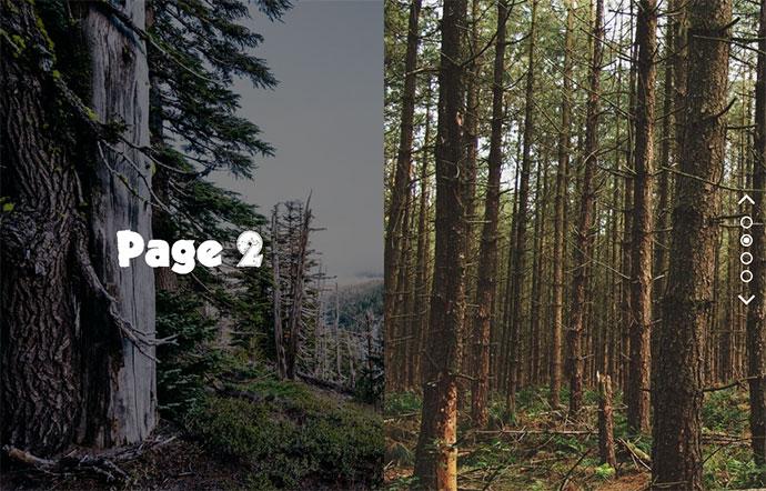 20 креативных CSS переходов страниц