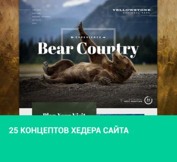 25 концептов хедера сайта