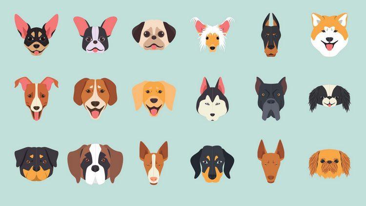 Векторные иллюстрации разных пород собак
